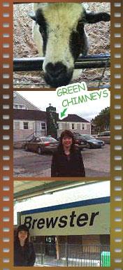 グリーンチムニーズの画像